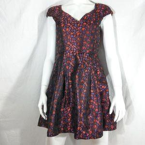 NWT Alice's Pig Shiny Flared Dress